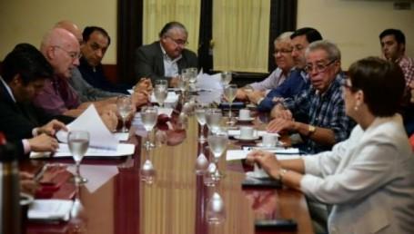 Tarifa eléctrica: Senadores recibieron a instituciones intermedias