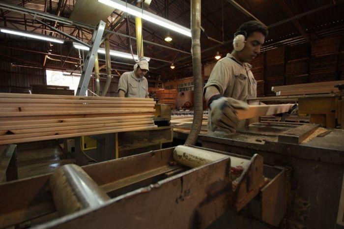 Corrientes: Notoria caída de la actividad foresto-industrial.