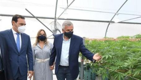 Primer paso para producir cannabis medicinal en Corrientes
